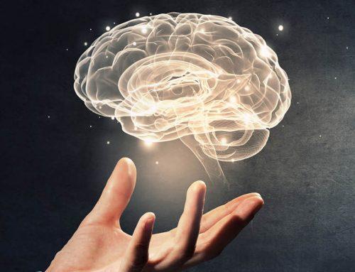 El neuromarketing en el comercio